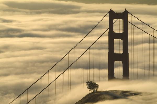 golden gate bridge in fog by Sarka Holeckova