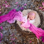 newborn baby girl sleeping in a nest photographed by San Francisco Bay Area and Santa Barbara baby photographer Sarka Photography