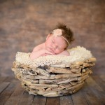 newborn baby girl sleeping in a driftwood bowl photographed by San Francisco Bay Area and Santa Barbara baby photographer Sarka Photography