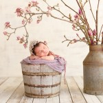 newborn baby sleeping in a wood bucket with a magnolia photographed by San Francisco Bay Area and Santa Barbara baby photographer Sarka Photography
