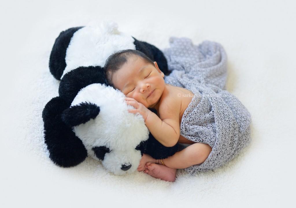 Benjamin east bay area newborn photo session