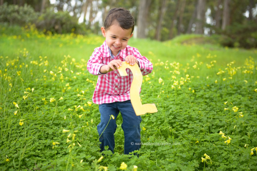 two year old boy in a flower field in the spring photographed by Santa Barbara family photographer Sarka