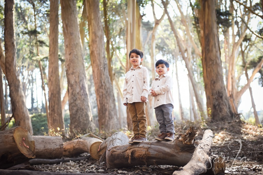 brothers playing and hugging in the presidio during their photo session by sarkaphotography